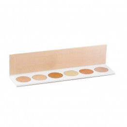 Palette Professionale Eye shadow Chameleon